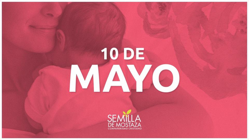 D A De La Madre Series Semilla De Mostaza
